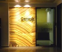 Genesis Energy Solutions